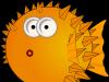 Ce este meteorismul abdominal