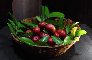 Sănătate de la natură - Kokum