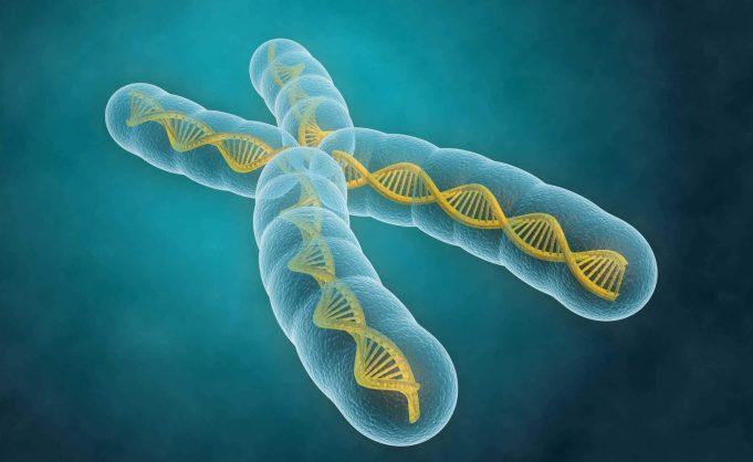Spiritul şi codul genetic - II