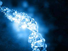 ADN-ul este lumină vie