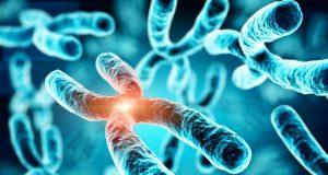 Misterul cromozomilor şi bolile