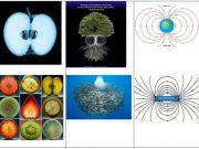 Vortexuri, Spirale şi Meandre Cosmice