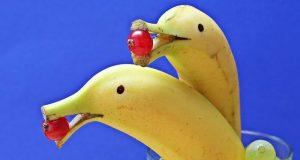 Sănătate de la natură – Alimentaţia, hrană sau otravă?