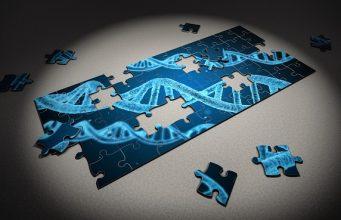 originea genetica a omenirii