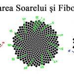 Floarea Soarelui Geometrie Sacra Fibonacci