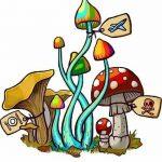 Psihedelice, Halucinogene, Psilocibin