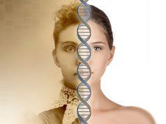 Cum resetam ADN-ul