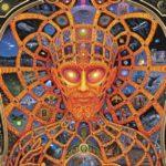 psihedelice-dmt-et-entitati